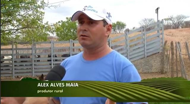 Produtor rural da cidade de Rafael Fernandes é destaque na INTER TV