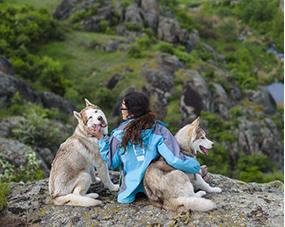 pet travel care