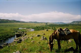 Mongolia, Riitta reissaa,  Tuul-joku, mongolianhevonen