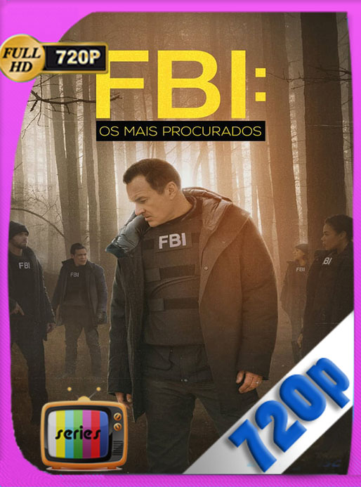 FBI Most Wanted Temporada 2 HD 720p Latino [GoogleDrive] [tomyly]