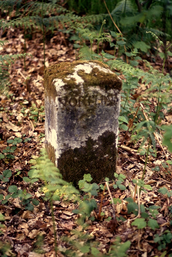 Photograph of a parish boundary marker in Leggatts estate (Northaw side). Image from the Images Of North Mymms Collection
