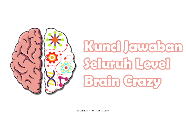 Kunci Jawaban Brain Crazy