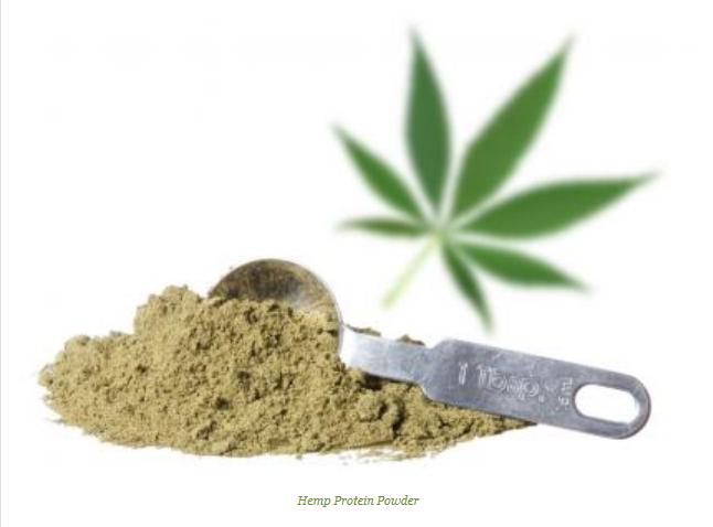 Hemp Protein Powder Side Effects