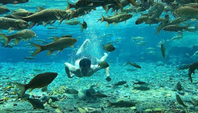 Review Objek Wisata Pemandian Batang Tabik