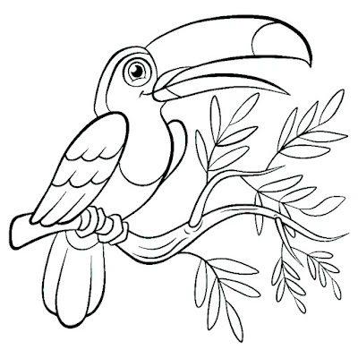 papağan resmi