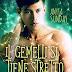"""Recensione """"Il Gemelli si tiene stretto il Capricorno"""" (Serie Segni d'amore #3) di Anyta Sunday"""