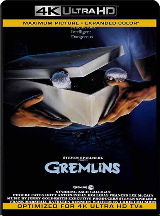 Gremlins (1984) 4K 2160p UHD [HDR] Latino [GoogleDrive]