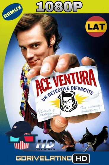Ace Ventura, Un Detective Diferente (1994) BDRemux 1080p Latino-Ingles MKV
