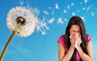 Causes of allergies in humans