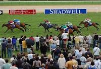 Le mois août couses de chevaux a Deauville