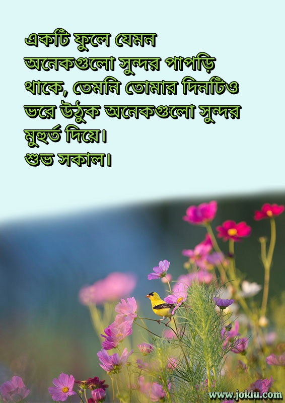 Beautiful petals good morning message in Bengali
