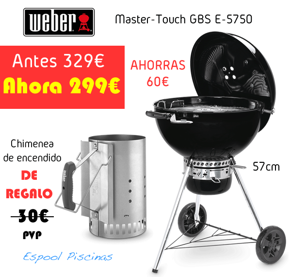 arbacoa Weber Master Touch E-5750 Espool Piscinas