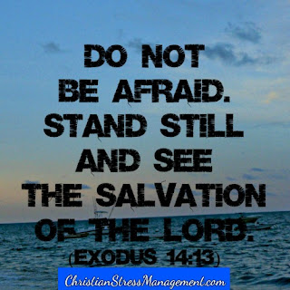 Do not be afraid. Stand still and see the salvation of the Lord. (Exodus 14:13)