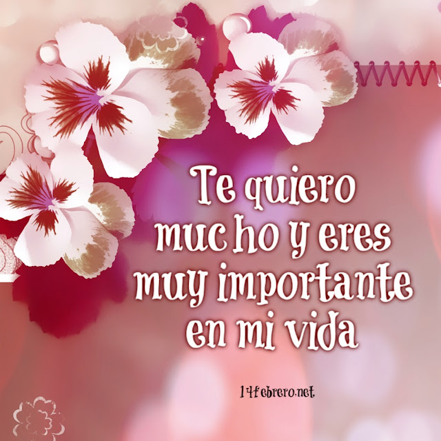 te quiero mucho y eres muy importante en mi vida