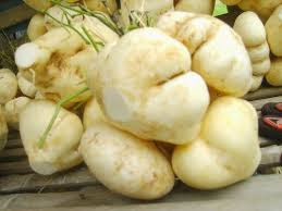 The Amazing Of Health Benefits of Jicama Fruit for High Blood - Healthy T1ps