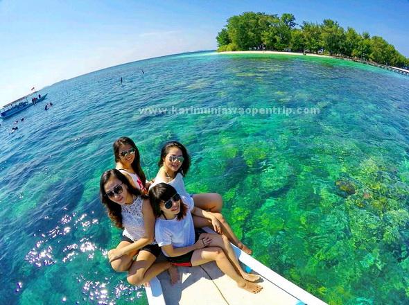 Harga Paket Wisata Karimunjawa 2020 2021 400rb An Open Trip Paket Wisata Karimunjawa Murah Tour Travel Harga Jujur