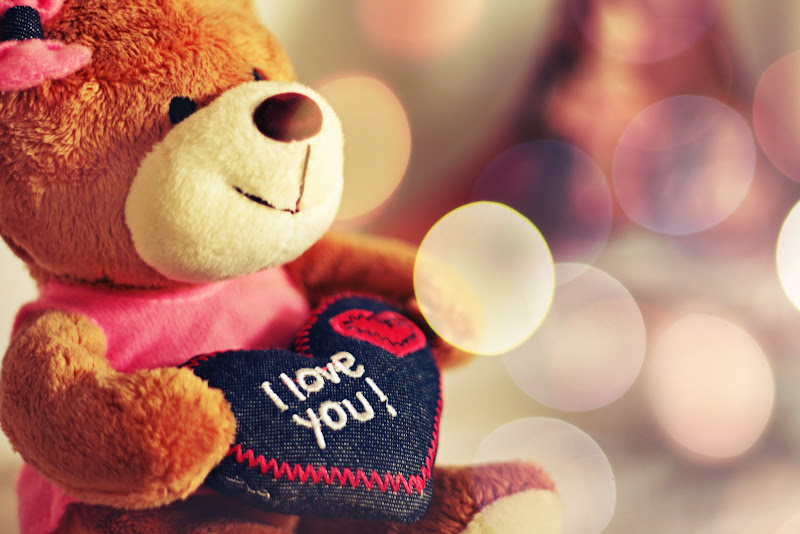 Valentine Teddy Bear Wallpapers title=