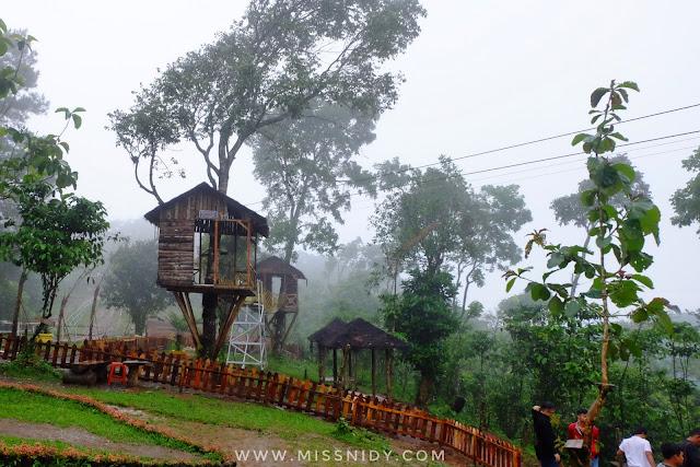 rumah pohon di kalibaya brebes jawa tengah