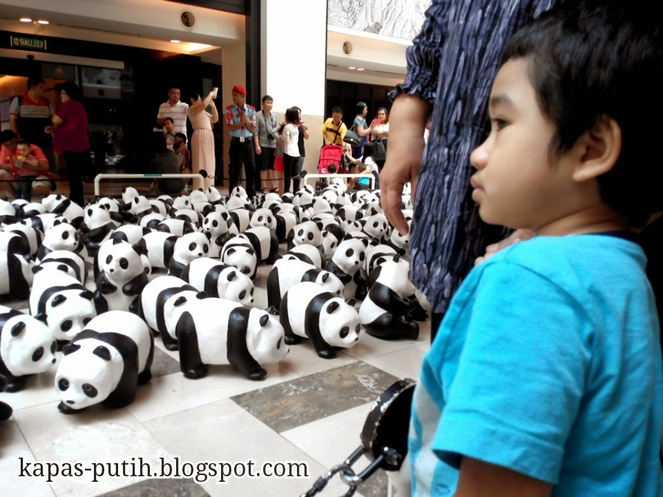 Replika Panda at PUBLIKA SOLARIS