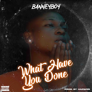[MUSIC] BANNYBOY – WHAT HAVE YOU DONE