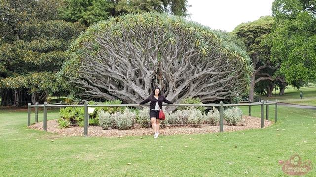 O que fazer em Sydney
