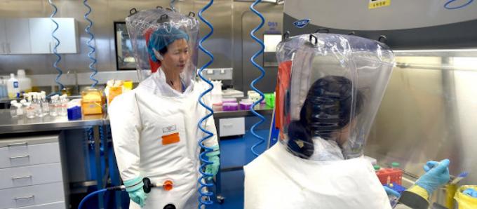 Αποκαλυπτικό δημοσίευμα: «Η Κίνα δημιούργησε ποντίκια με ανθρώπινα πνευμόνια για να γίνουν πειράματα για ιούς»