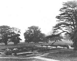 Drawing of the view of the proposed Italian garden