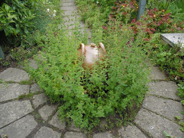 placyk w ogrodzie