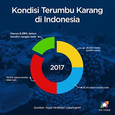 kondisi terumbu karang di Indonesia