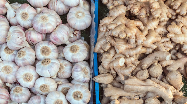How To Start Ginger Garlic Paste Business From Home ?