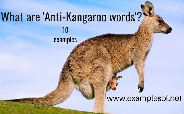 10 examples anti-kangaroo words