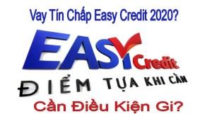 Vay Tín Chấp Cty Tài Chính Easy Credit Năm 2020?