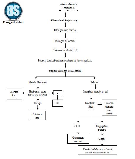 Pathway infark miocard akan kami bagikan pada postingan kali ini Pathway Infark Miocard Doc dan Pdf