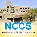 NCCS Pune Recruitment