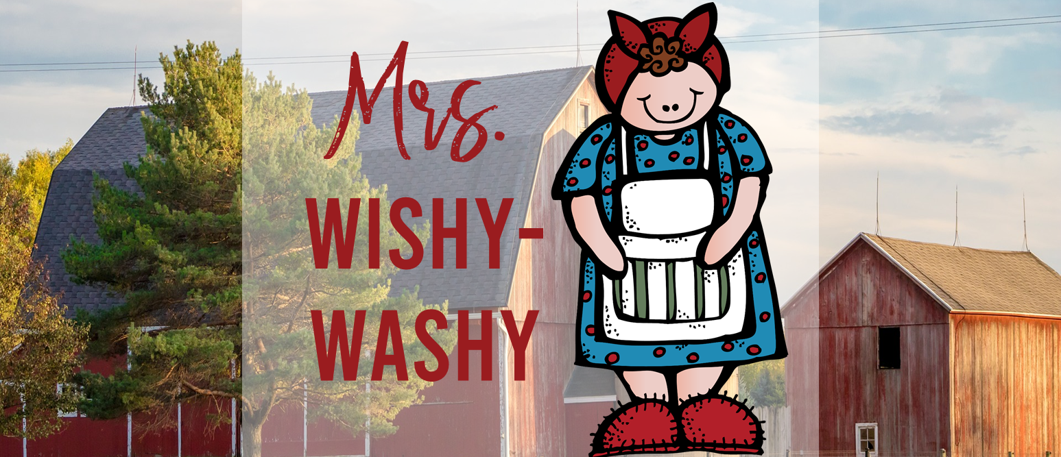 Mrs Wishy Washy book study literacy unit with Common Core aligned companion activities and  class book for grades K-1