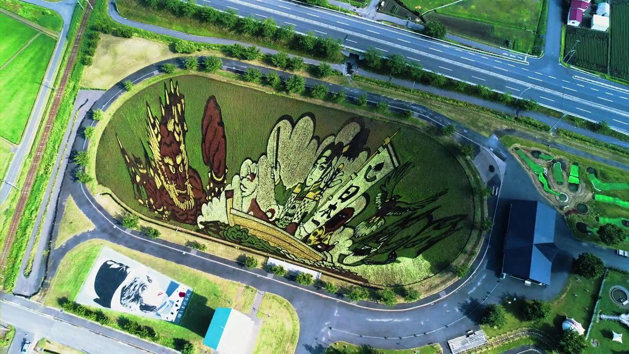 外国人「日本の田んぼアートがすごい」(海外の反応)
