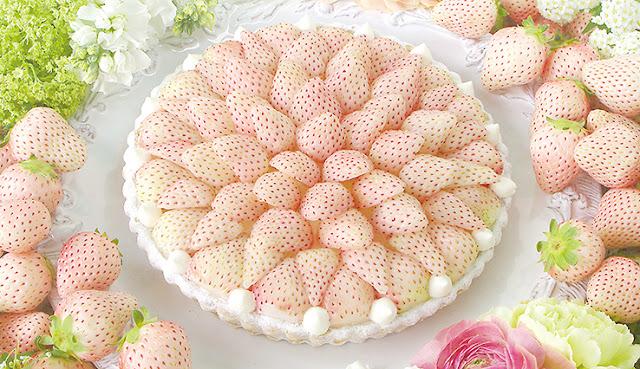 Необычные и удивительные овощи и фрукты - Белая клубники