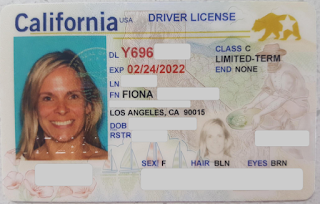 california-driver-licence