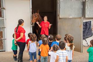 Grupo de niños de espaldas con sus dos monitoras, mirando hacia el interior de una cuadra mientras una de las monitoras les cuenta quien es el caballo.