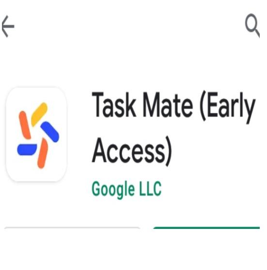 Google Task Mateearning