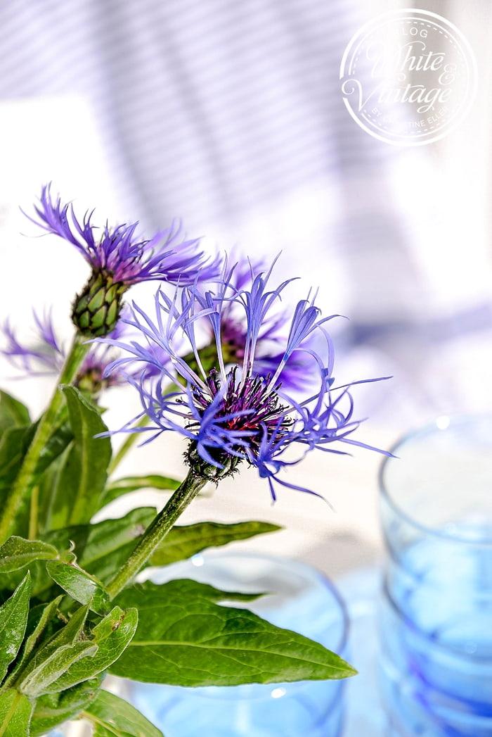 Sommerdeko in Blau-Weiß