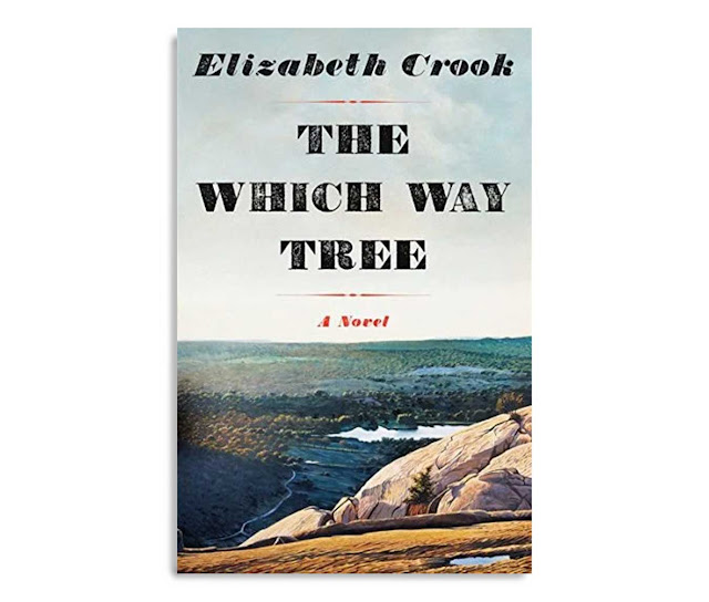Elizabeth Crook the Which Way Tree cover