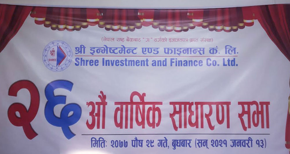 Shree Investment And Finance