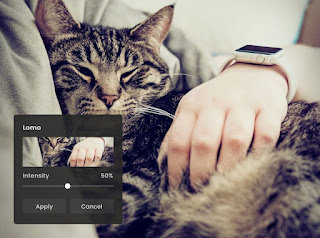 Easy-to-use Fotor's Lomo Effect Photo Editor