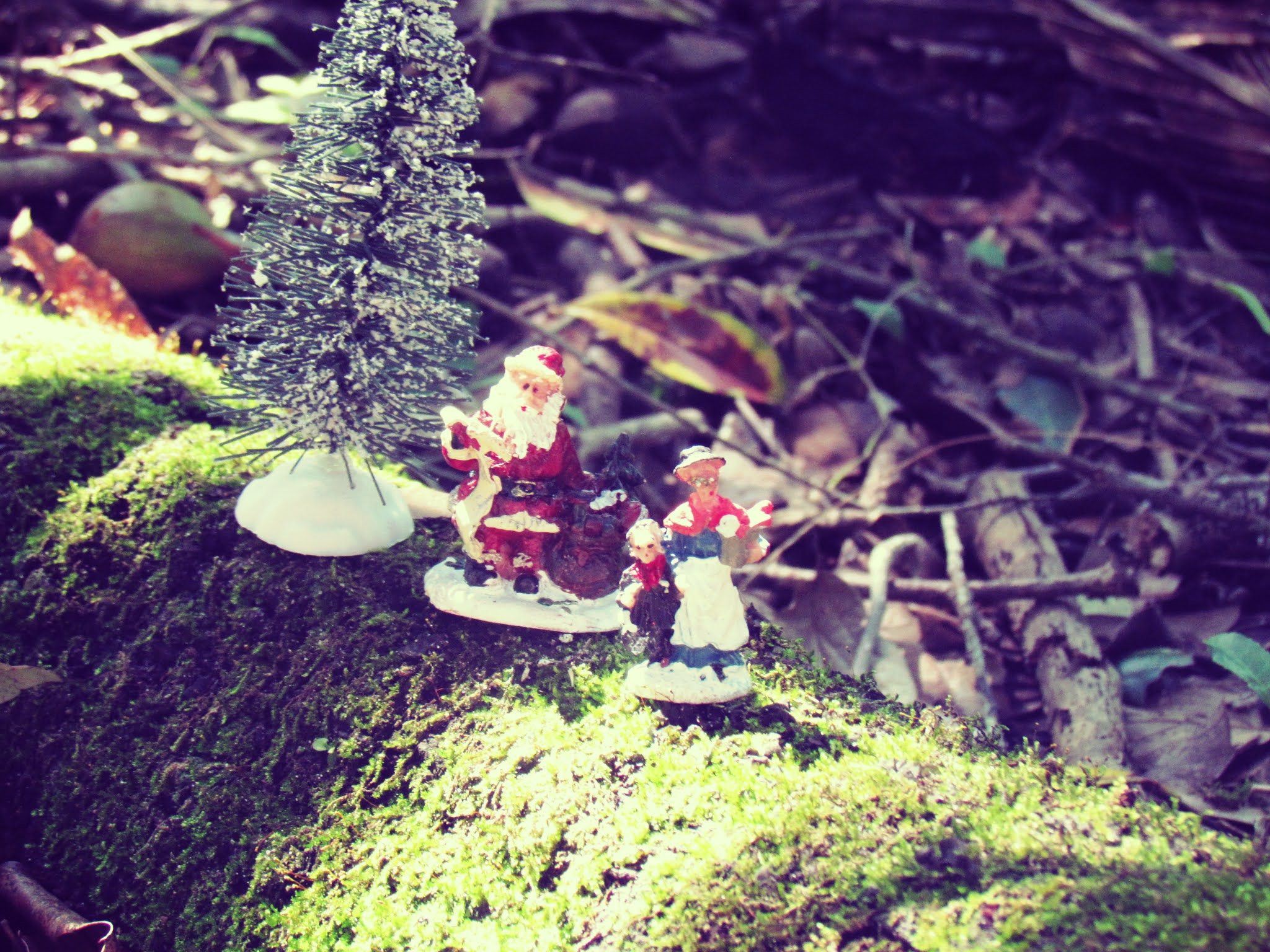 A holiday nature altar display with Santa Clause and Mrs. Clause figurines in mother nature on a bayou boardwalk in Florida landscape