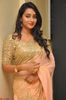 Bhanu Shri looks stunning in Beig Saree choli at Kalamandir Foundation 7th anniversary Celebrations ~  Actress Galleries 041.JPG