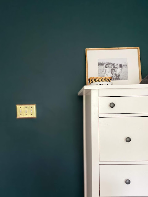brass light switch cover with sherwin williams cascades walls