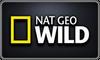 Natgeowild Online