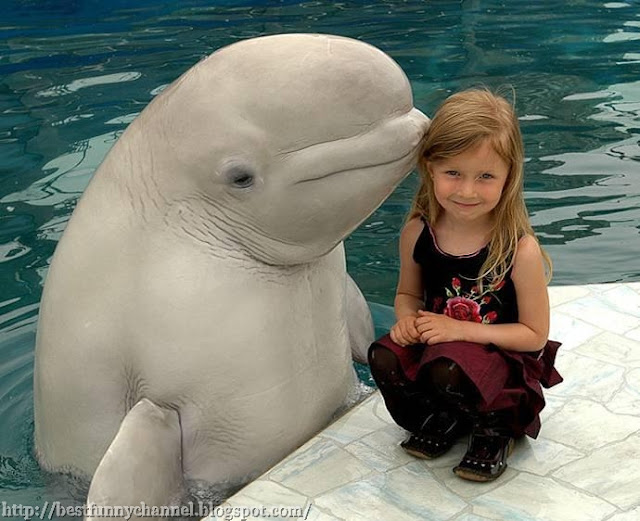 A girl and a dolphin.