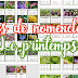 Cartes de nomenclature : Thème du printemps | MONTESSORI